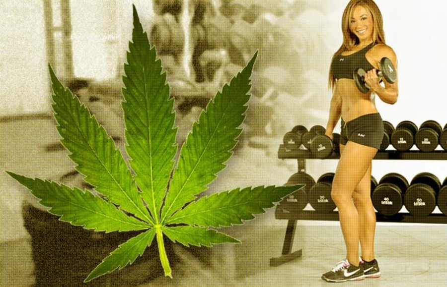 how to use marijuana to lose weight
