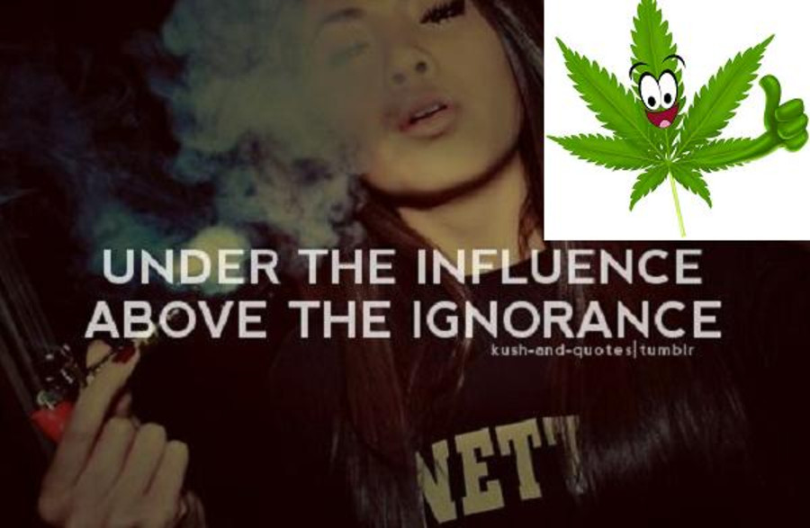 Top 10 Quotes About Marijuana That Will Blow Your Mind