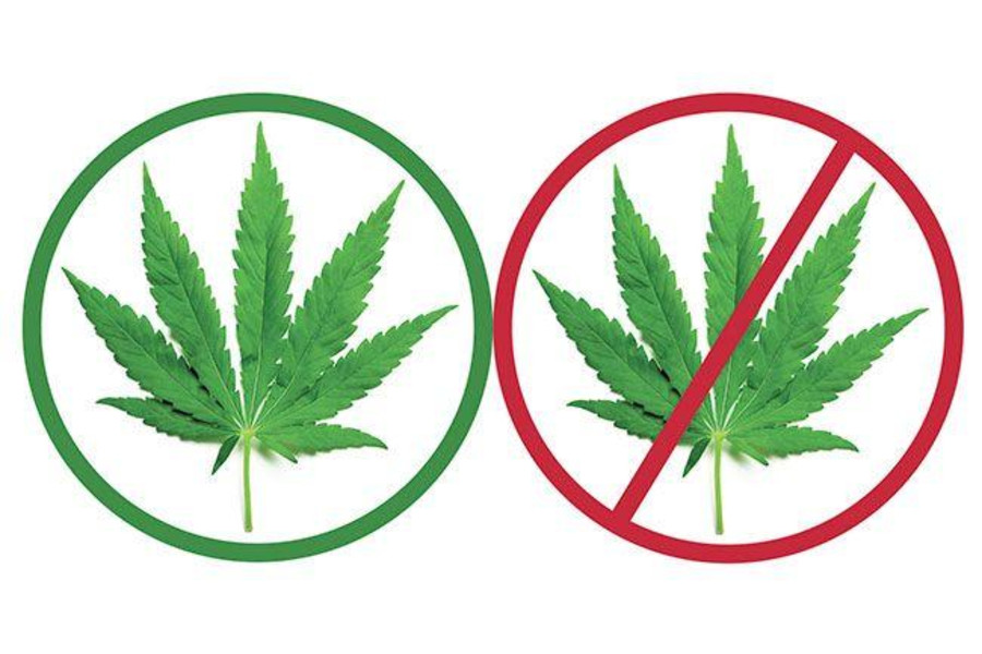 an argument against the use of marijuana