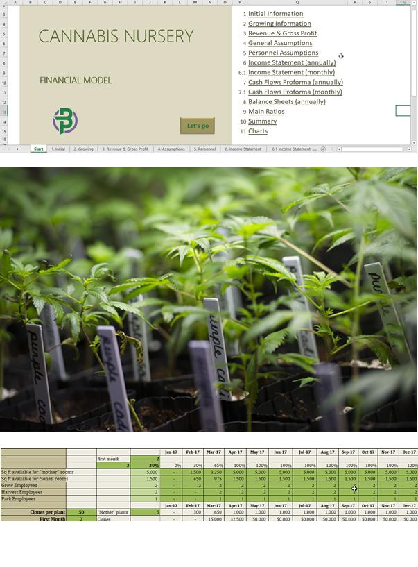 Cannabis clones nursery business plan template cannasos cannabis clones nursery business plan template product photo in san francisco san francisco ca cheaphphosting Images