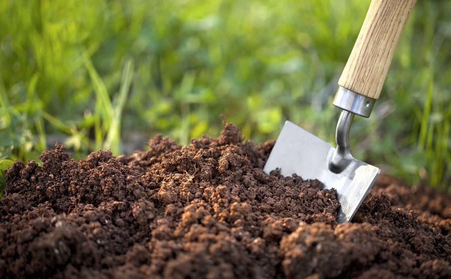 Tips on How to Improve Your Cannabis Soil While on A Budget 5