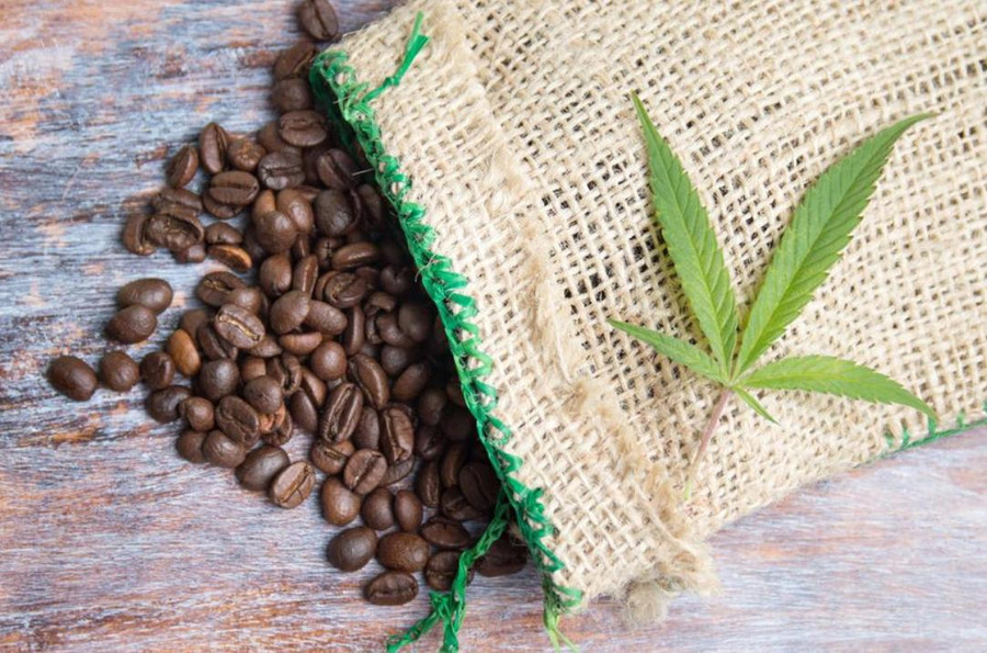 Why You Should Not Mix Coffee With Weed 1