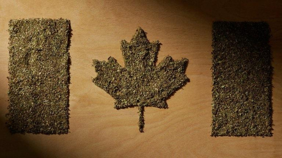 This Is How Much A Gram Of Weed Costs In Canada 2
